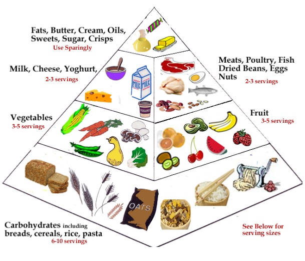 foodpyramid Dairy, Dairy Dangerous: The Harmful Effects of Dairy